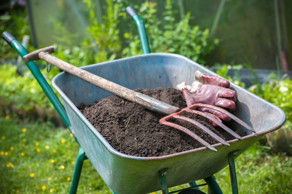 Compost for Soil Fertilizer and Mulch