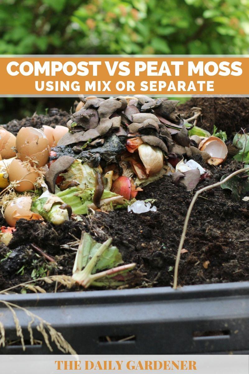 Compost vs Peat Moss 1