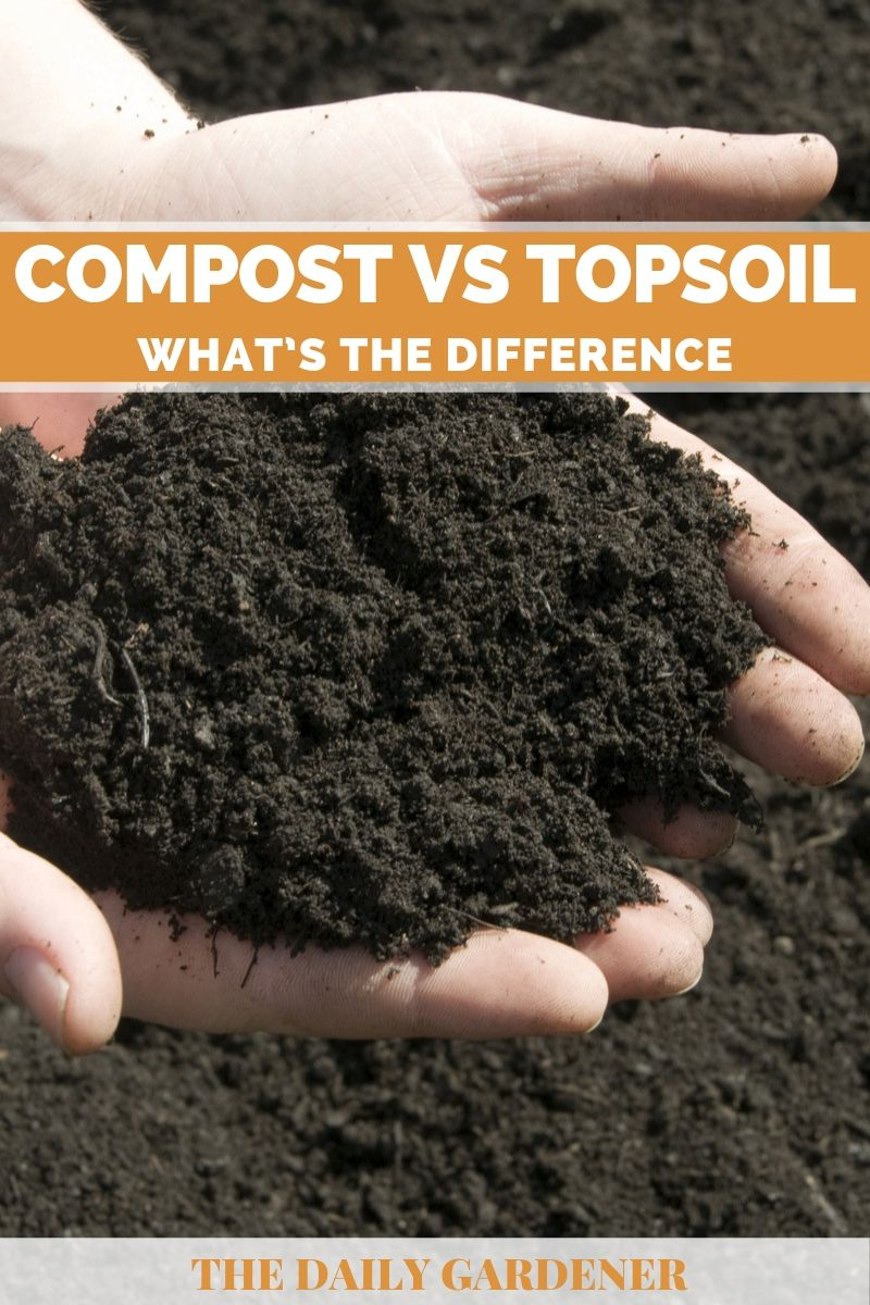 Compost vs Topsoil 1
