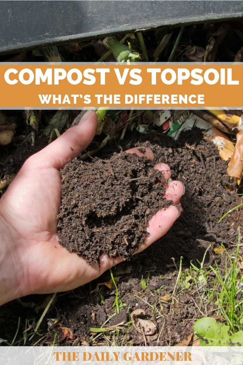 Compost vs Topsoil 2