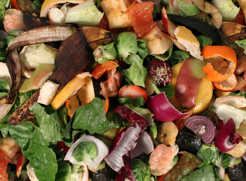Items You Should not Compost