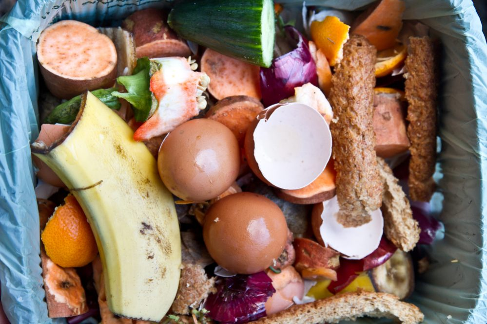 Things Can Compost from Kitchen