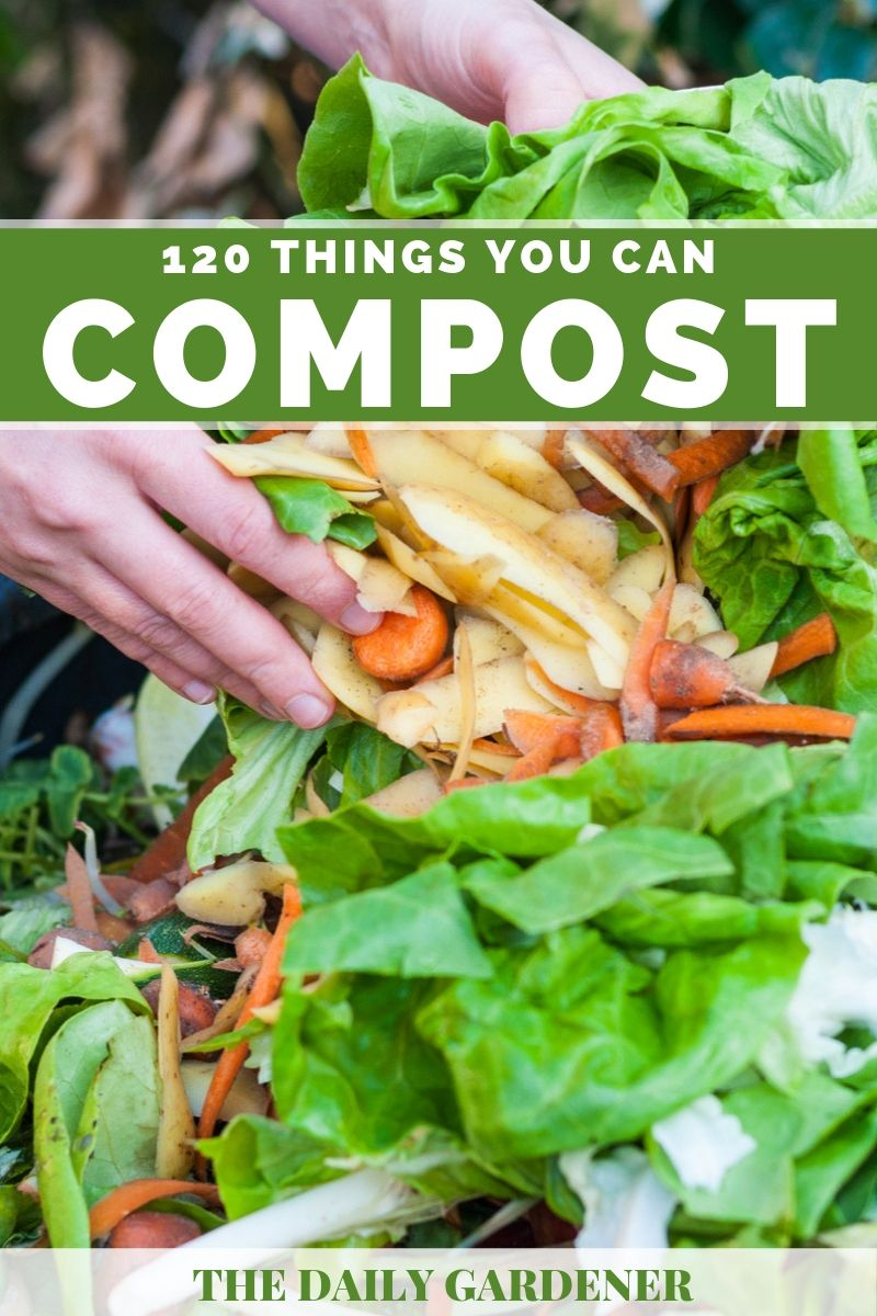 Things You Can Compost 1