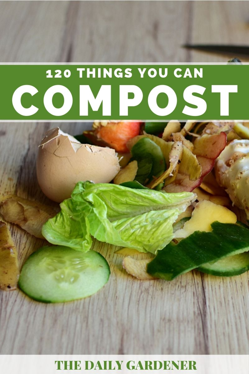 Things You Can Compost 2