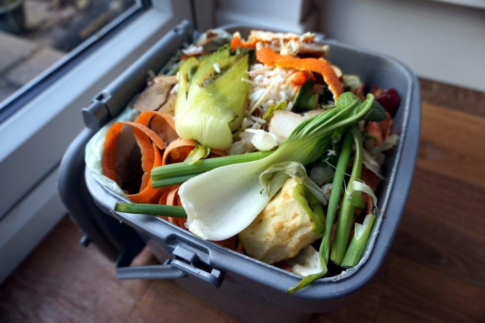 best compost bin Indoor
