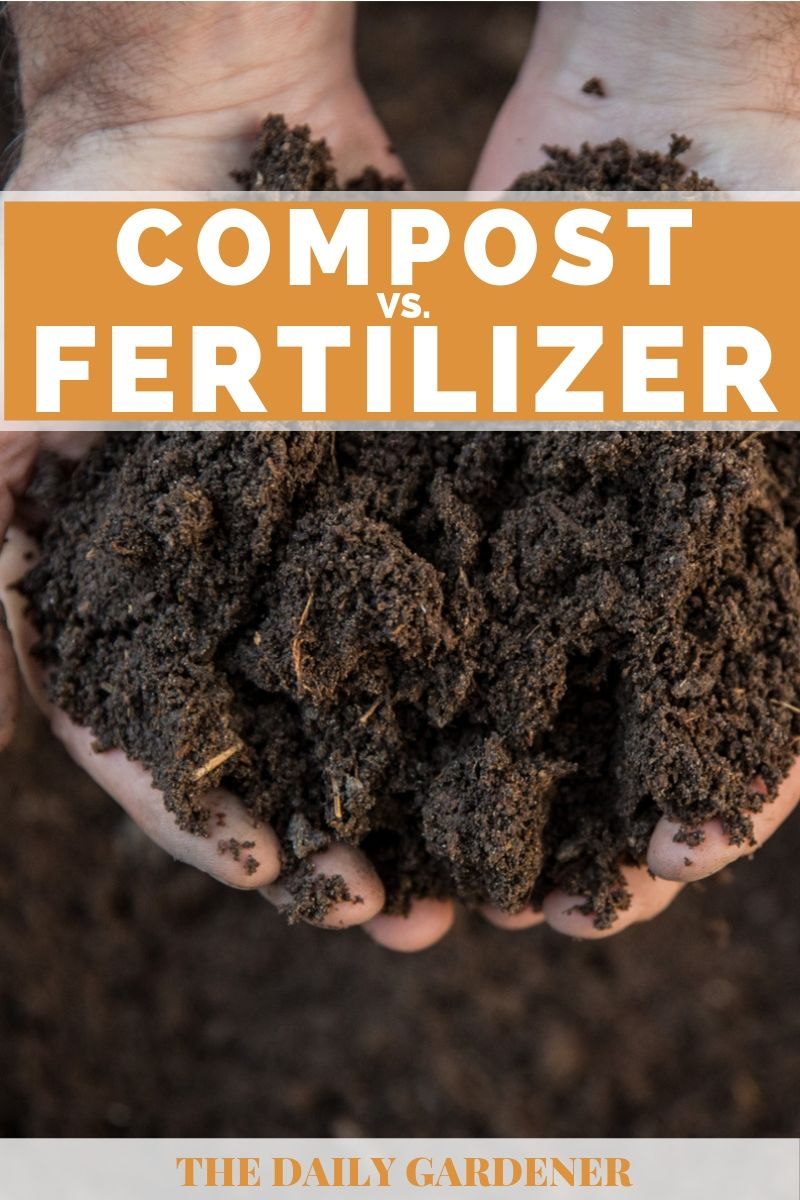 compost vs fertilizer 1