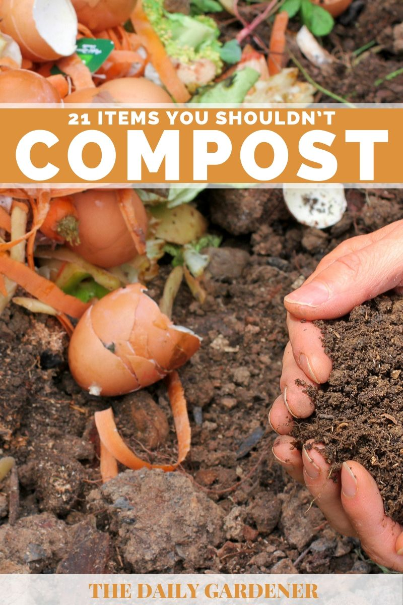 items should not compost 1