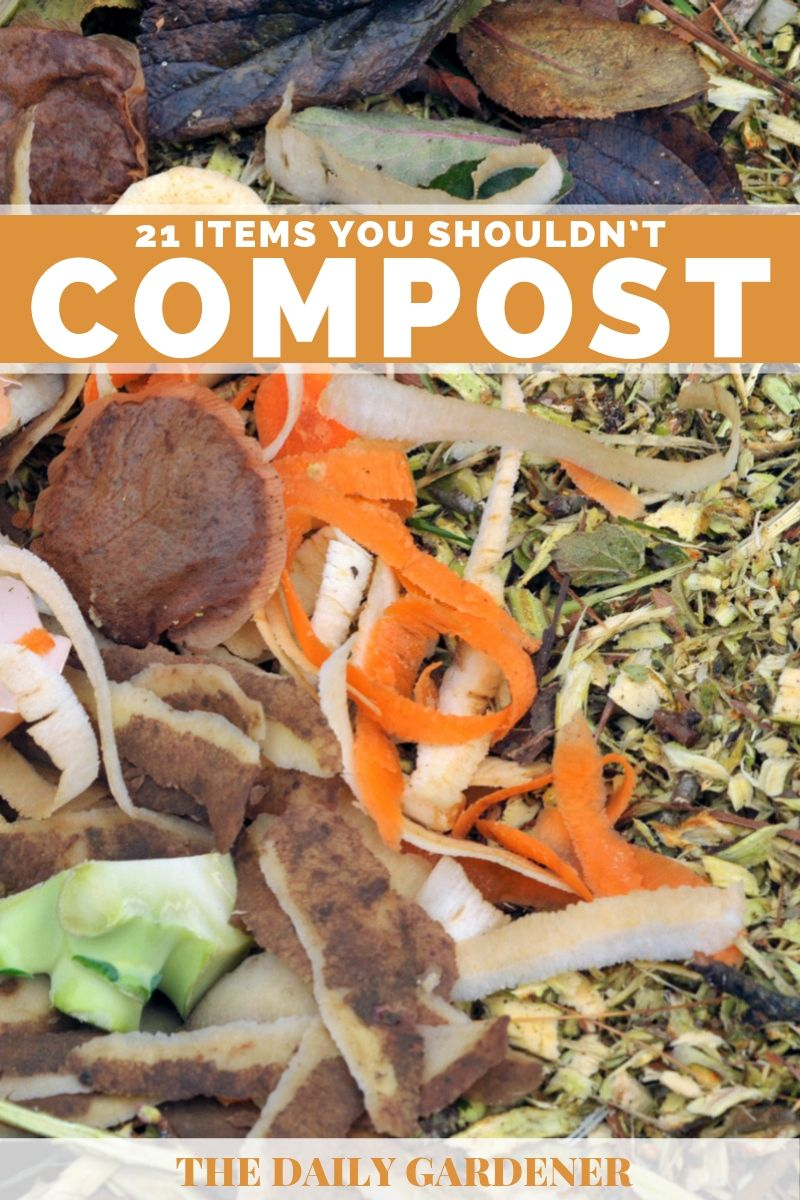 items should not compost 2
