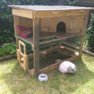 outdoor rabbit hutch
