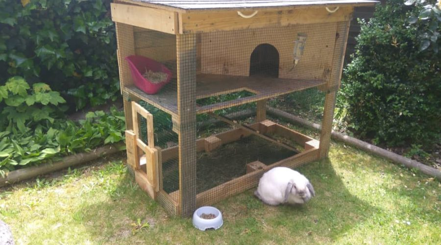 10 Best Indoor & Outdoor Rabbit Hutches of 2019 - The Daily ... Rabbit House Design Cold Weather on football rabbits, cold war rabbits, pets rabbits, six rabbits, green rabbits, racing rabbits, black rabbits, babies rabbits,