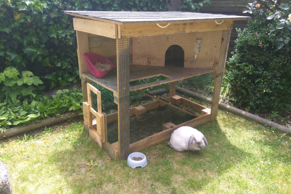 10 Best Indoor Outdoor Rabbit Hutches Of 2020 The Daily Gardener