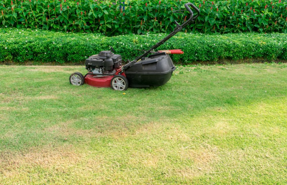 push weed eater