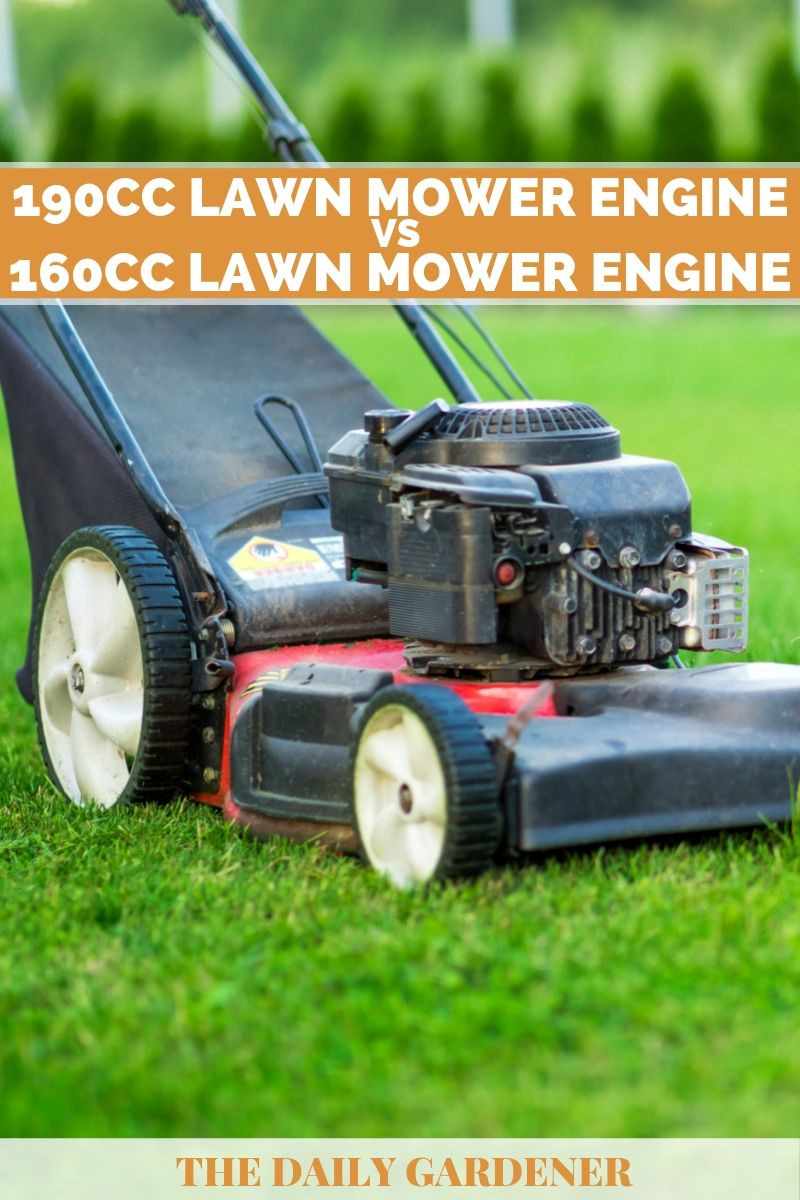 160cc vs 190cc Lawn Mower Engine 1