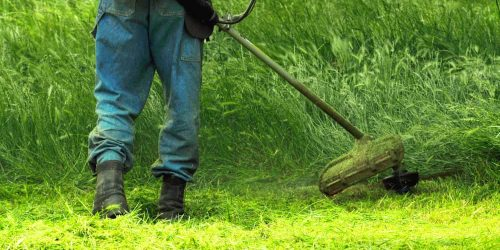 Best 4 Cycle String Trimmer Reviews 2019 (Gas & Cordless)