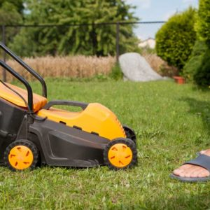Best Cordless Lawn Mower reviews