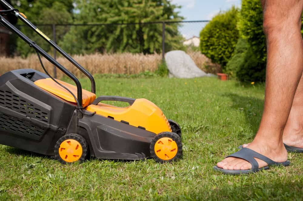 7 Best Cordless Lawn Mowers 2019 Battery Powered Mower