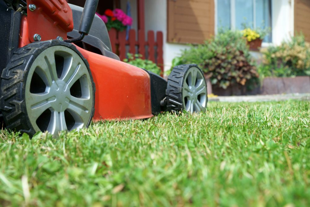 Best Electric Cordless Lawn Mower Reviews buying guide