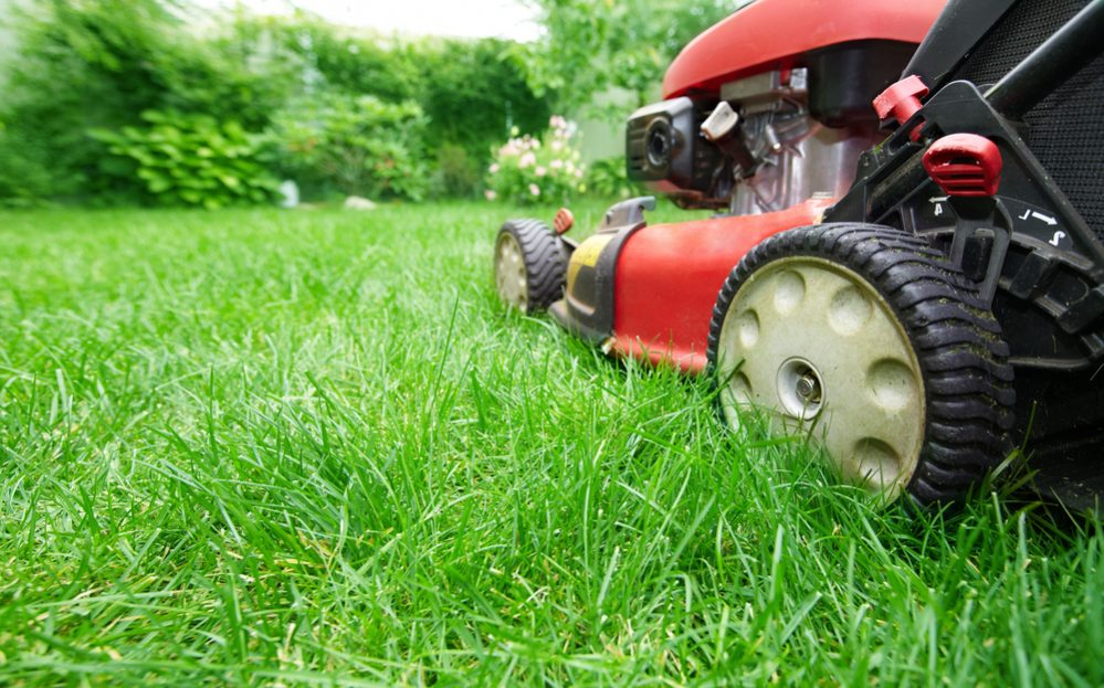 Best Electric Cordless Lawn Mower Reviews