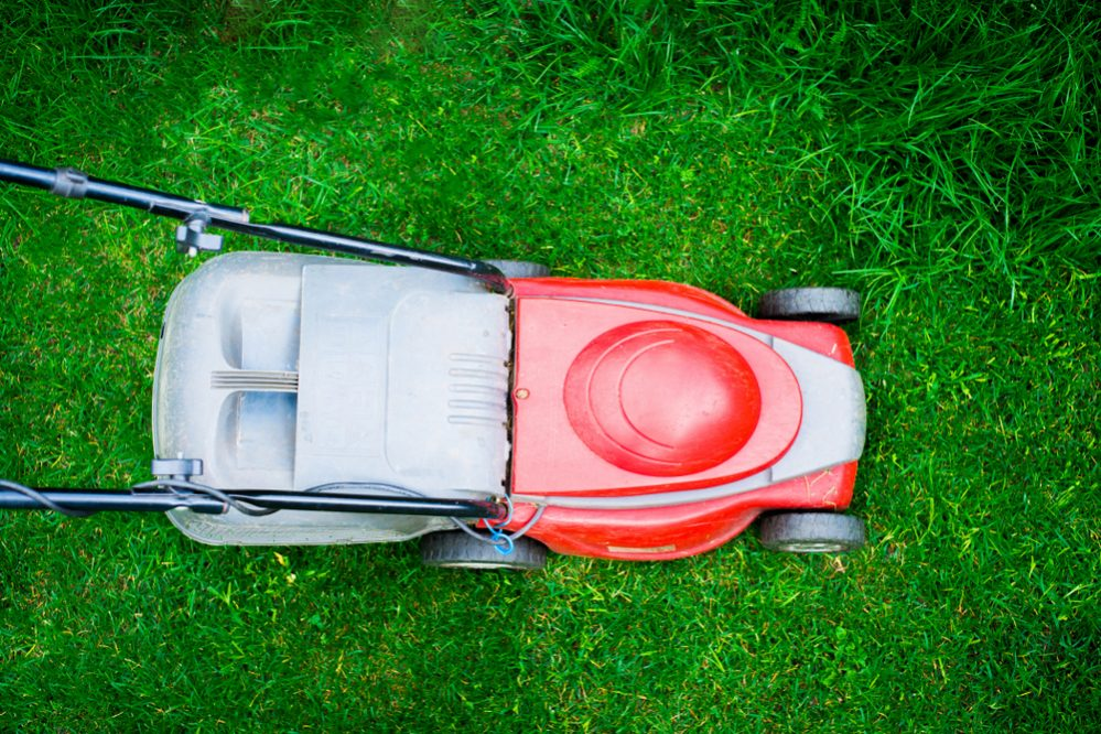 Best Electric Cordless Lawn Mower Reviews look for