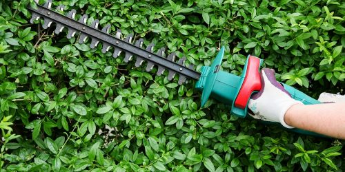 Best Electric Hedge Trimmer Reviews 2019 (Cord & Cordless?)