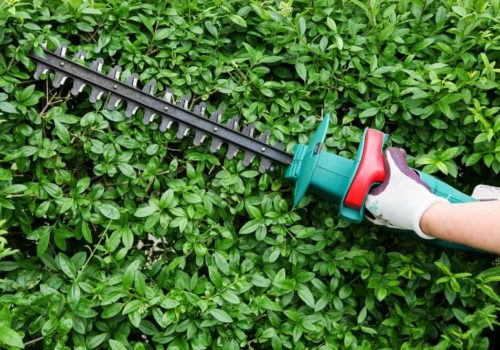 7 Best Electric Hedge Trimmers of 2019 – Cord & Cordless