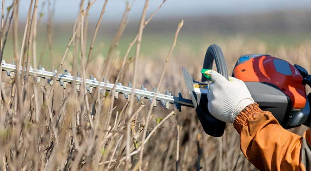 5 Best Gas Hedge Trimmers (Reviews & Guide of 2019) - The