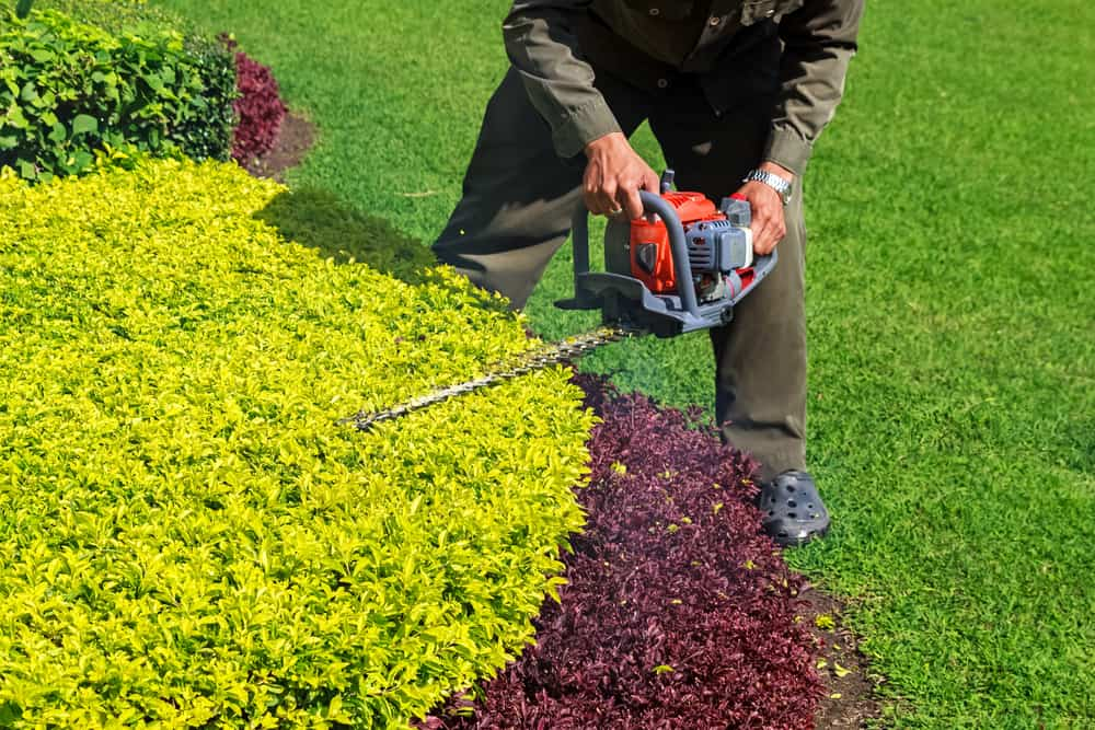 Best Gas Hedge Trimmer Reviews pros and cons