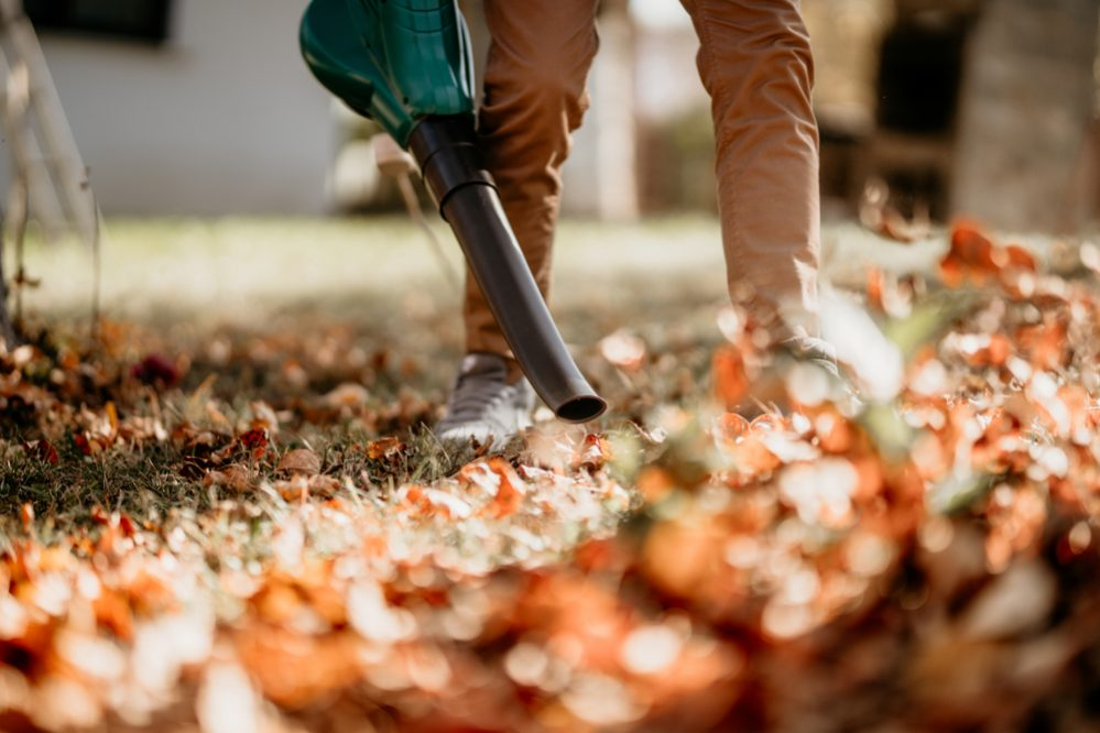 Best Leaf Mulcher