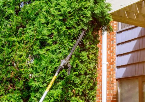 5 Best Pole Hedge Trimmers of 2019 – Long Reach Hedge Trimmer Reviews
