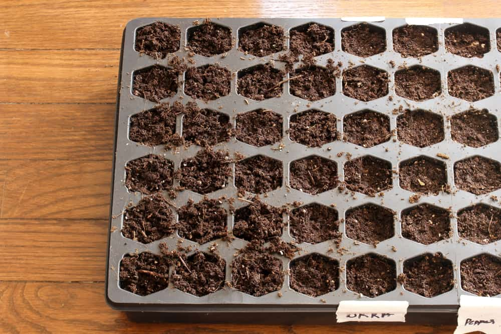 Best Seed Starting Kits Durability
