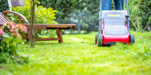 What's the Best Time of Day to Mow Lawn?
