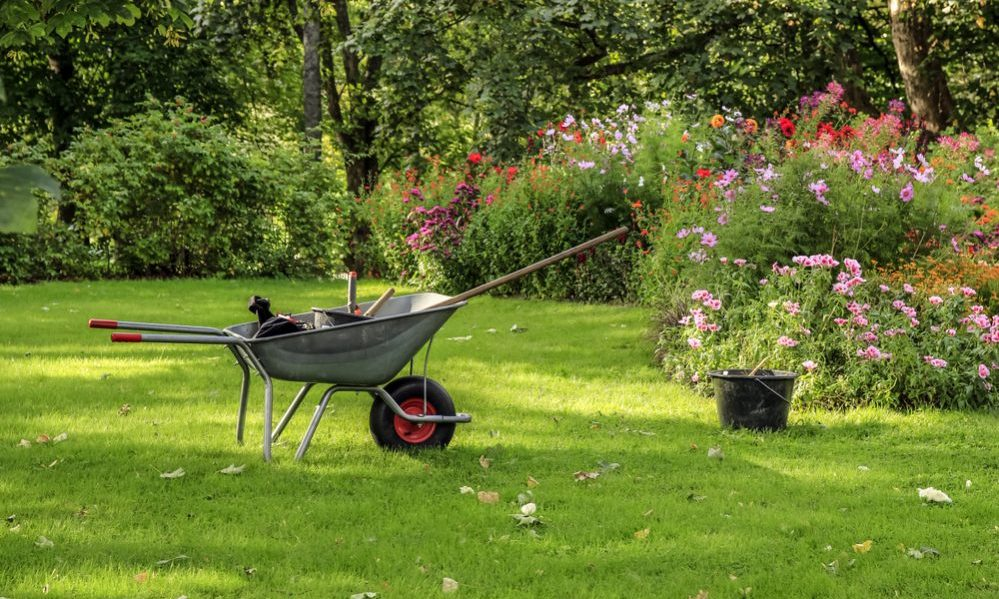 Best Wheelbarrow buying guide