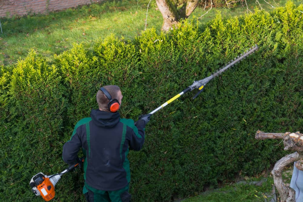 Best extended cordless Pole Hedge Trimmer