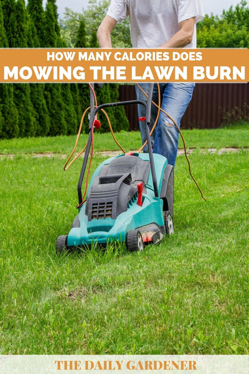 Calories Does Mowing the Lawn Burn 2