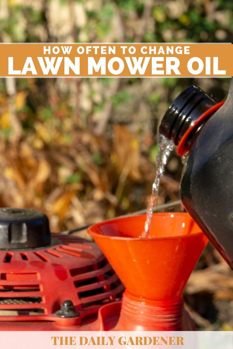 Change Lawn Mower Oil 2