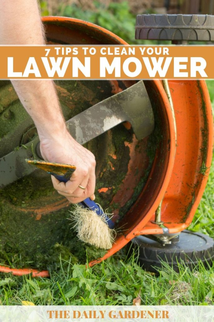 Clean Your Lawn Mower 1