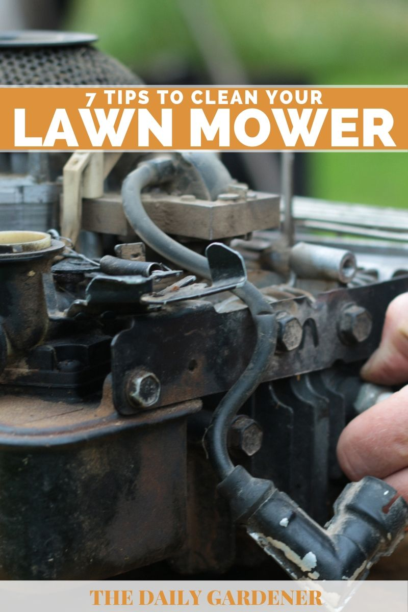 Clean Your Lawn Mower 2