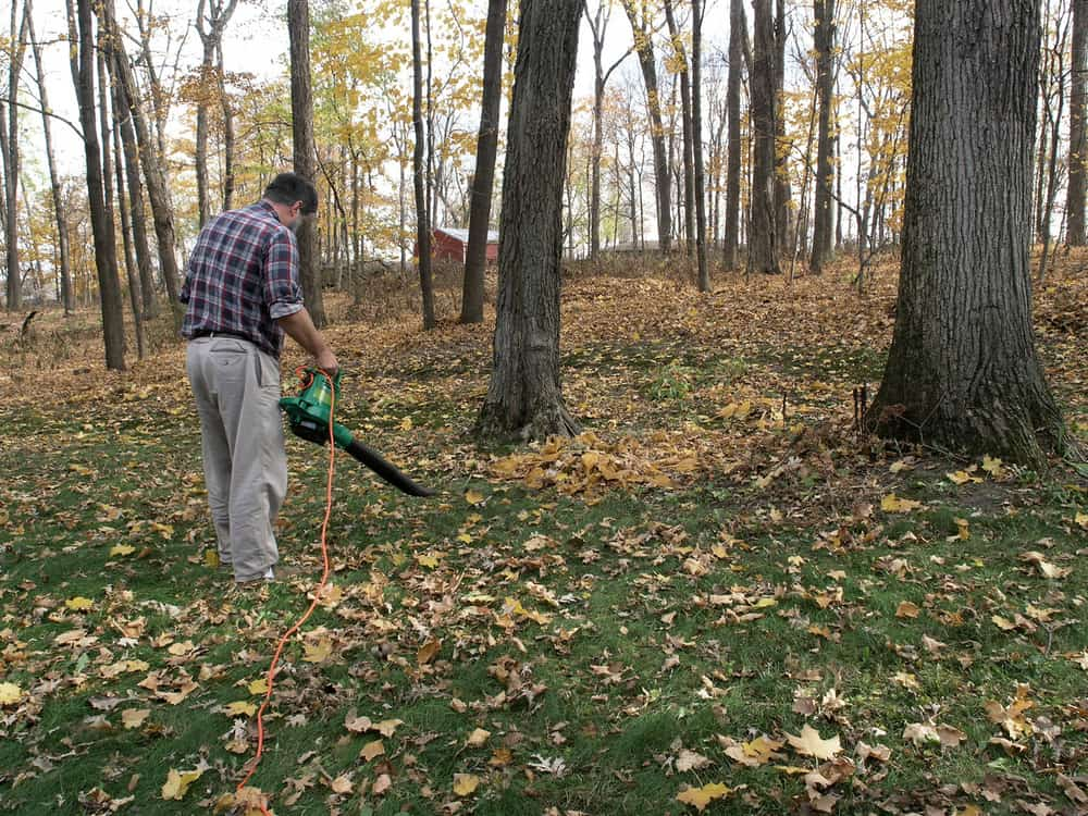 Electric corded leaf blowers – the cons