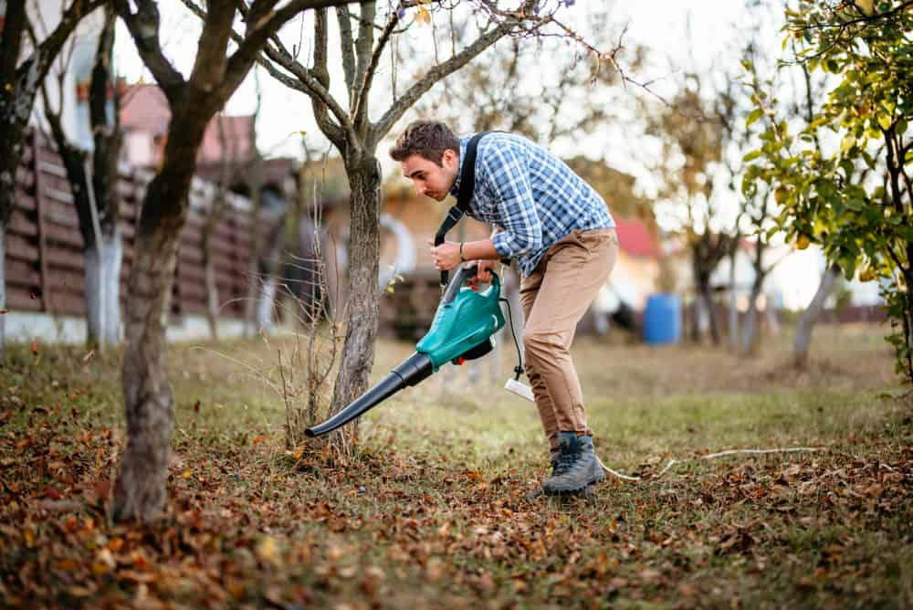 Electric corded leaf blowers – the pros