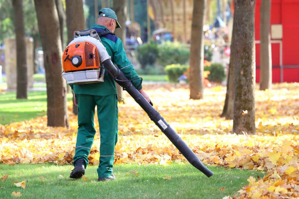 Five tips for leaf blowing