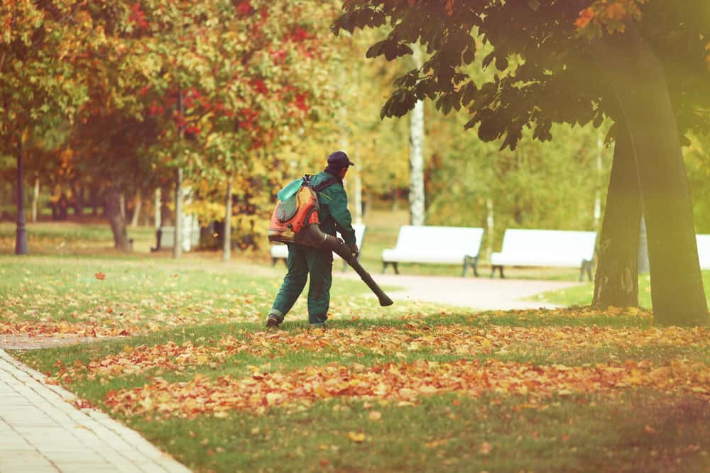 Gas-powered leaf blowers – the pros