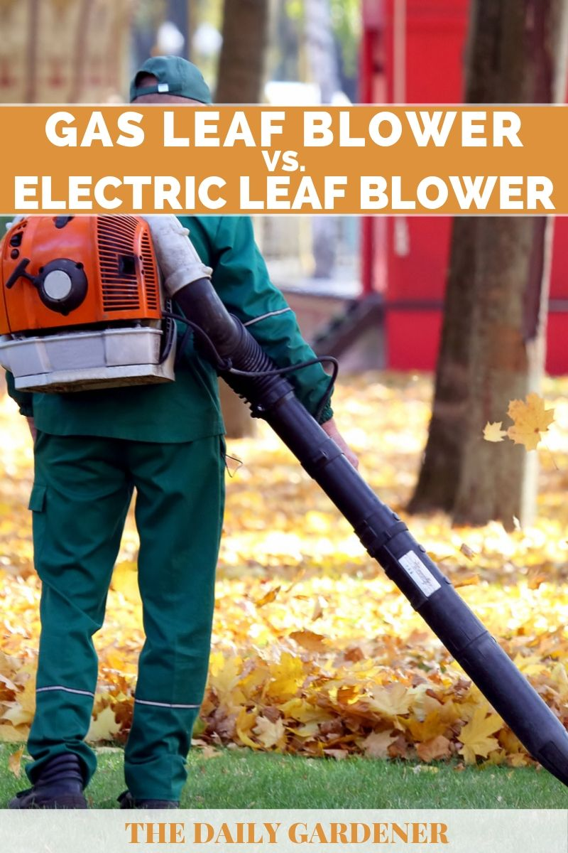 Gas vs. Electric Leaf Blower 2