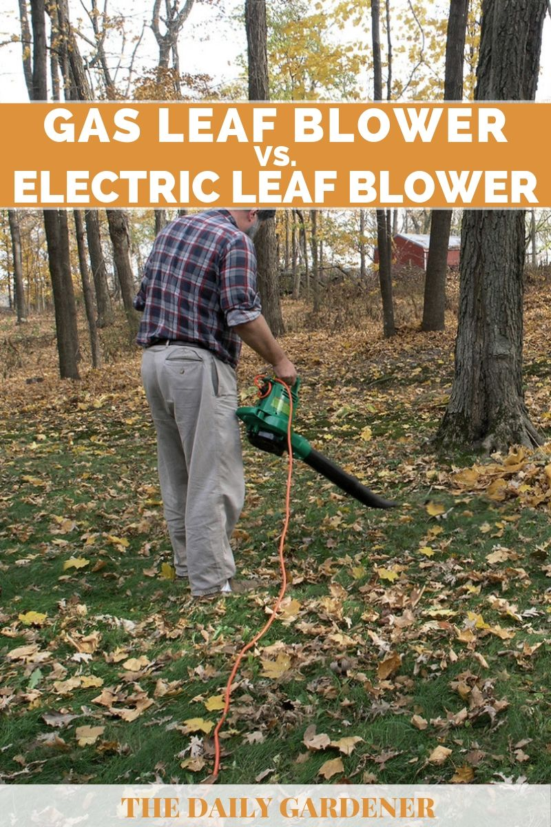 Gas vs. Electric Leaf Blower 3