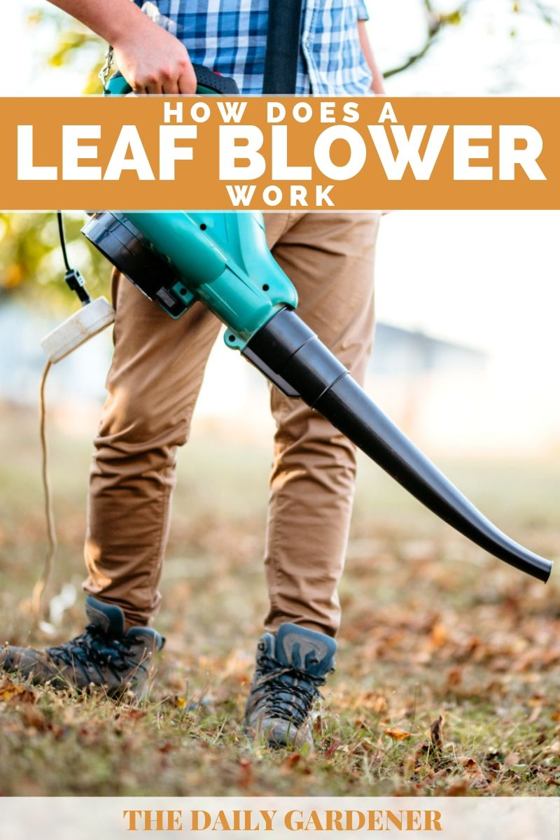 How Does Leaf Blower Work 1