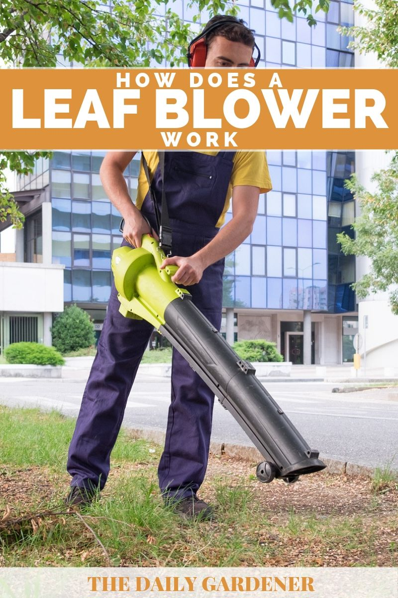 How Does Leaf Blower Work 2