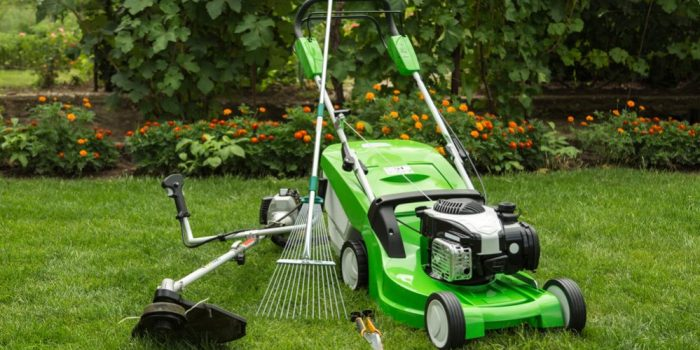 How Often Mow Lawn