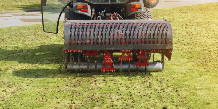 How Often Should You Aerate Your Lawn