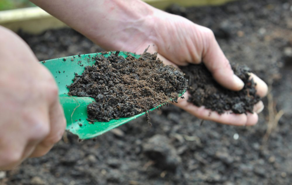 How deep a layer of compost do you need