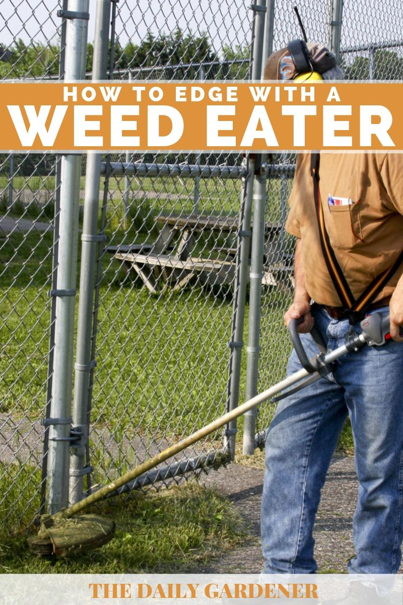 How to Edge With a Weed Eater 1