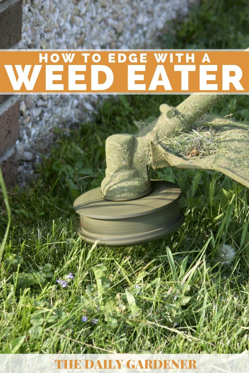 How to Edge With a Weed Eater 2